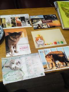 猫作品展覧会のDMずらり!