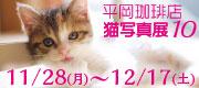 Hiraco10_bnr_2